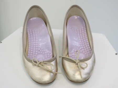 手持ちの靴に入れて使います