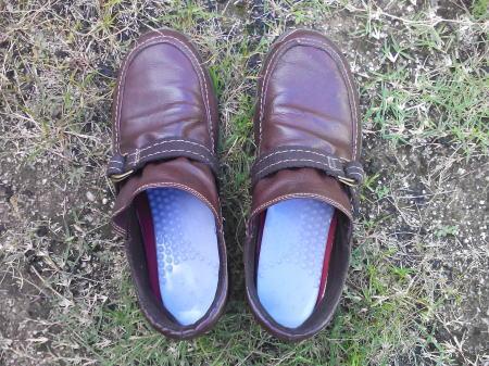 モニターすることになって、靴に入れてみました